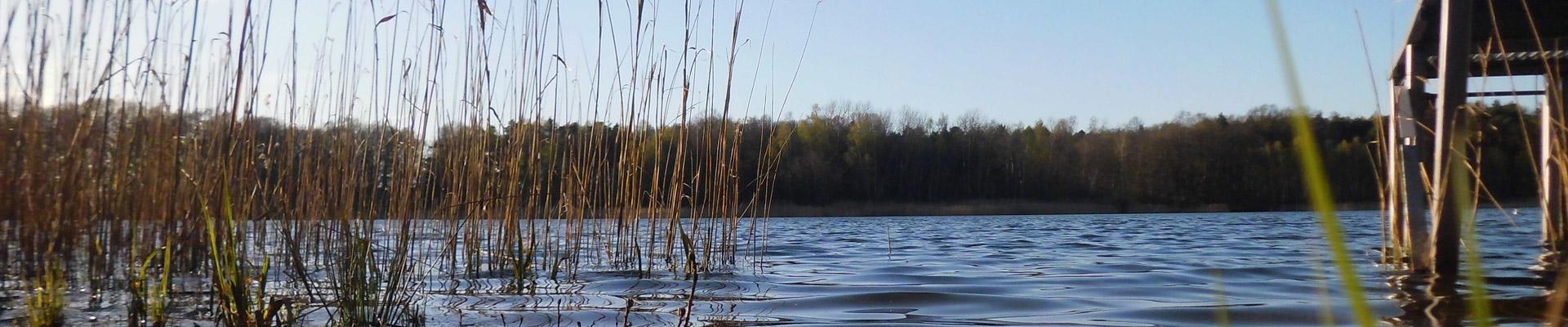 Erlebnis Dahlener Heide